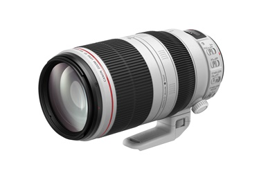 Canon EF 100-400mm/4,5-5,6L IS II USM